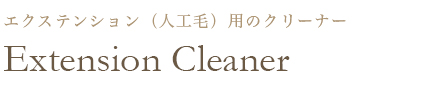 Extension Cleaner